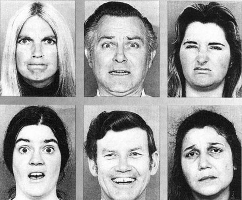Landis Facial Expression