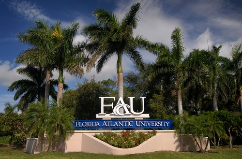 Florida Atlantic University - online accounting masters degree