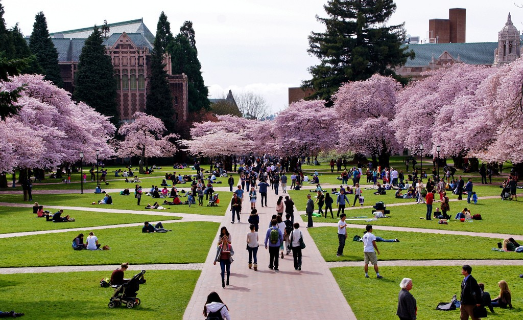 University of Washington asian american studies