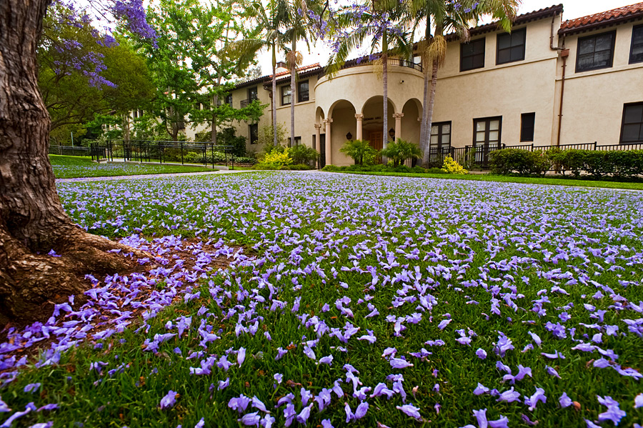 Occidental College small colleges in California