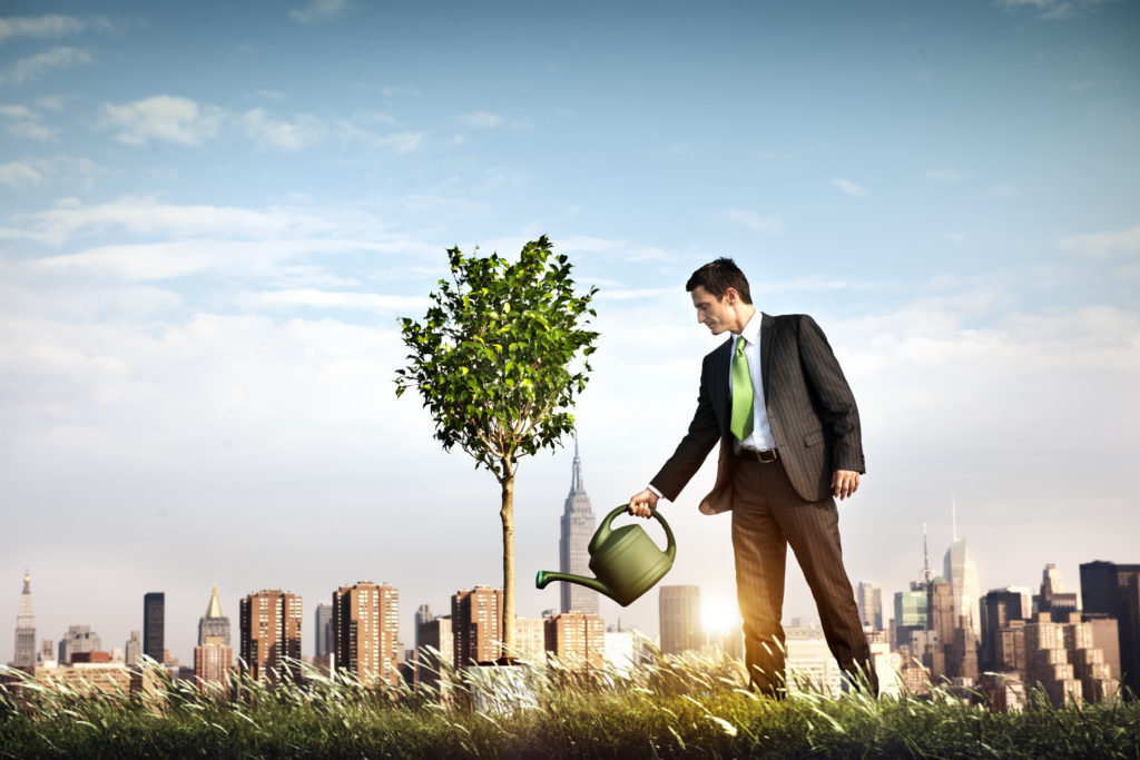 Image of businessman watering a tree for our coverage of Super Entrepreneurial Scholarships